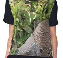 Hedgie and Chicks Chiffon Top