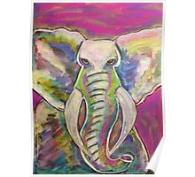 Colours of the Elephant Poster