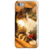 Prince Strikes a Pose iPhone Case/Skin