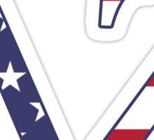 dz america again  Sticker