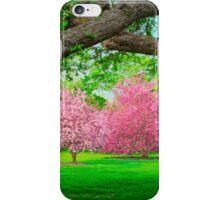 Shy Elegance iPhone Case/Skin