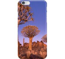 Dusk in the Quiver Tree Forest iPhone Case/Skin