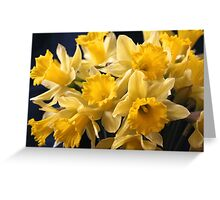 Bouquet of Bright Yellow Daffodils Greeting Card