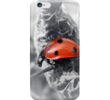 ARMED IN RED iPhone Case/Skin