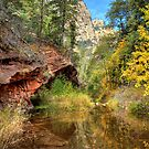 Oak Creek Canyon in Sedona by K D Graves Photography