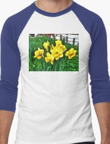 Shy Daffodils  Men's Baseball ¾ T-Shirt