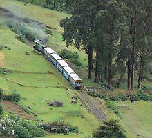 El tren de la montaña de Nilgiri by colourableindia