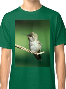 Landscapes for variety Classic T-Shirt