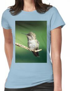 Landscapes for variety Womens Fitted T-Shirt