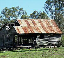 Derelict Dwelling by Jenelle  Irvine