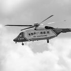 Search and Rescue by DerekMacKinnon