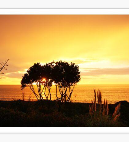 Sunrise in Bay View, NZ Sticker
