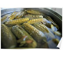 crispy salted cucumbers Poster
