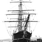 The Discovery at Dundee by Rupert Connor