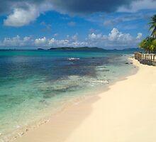 Palm Island, SVG by JCMM