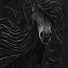 Night Horse by Mariya Olshevska