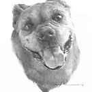Happy smiling dog drawing by Mike Theuer