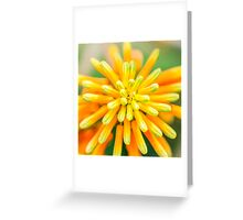 Atom Orange Flower Greeting Card