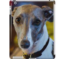 Baxter 1 iPad Case/Skin