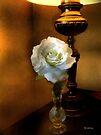 Lamplight Rose by RC deWinter