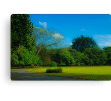 Green Showcase  Canvas Print