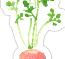 Patterns Everyday_ Carrot Rain Sticker
