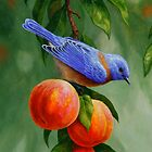 Bluebird and Peaches Samsung Phone Case by csforest