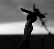 SILHOUETTE OF RUSTED BARBED WIRE Sticker