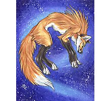Nightfox Photographic Print