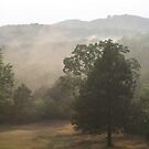 Steamy Afternoon in the Ozarks by John Carpenter