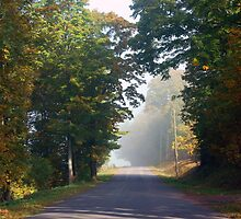 A Country Road by Sarah McKoy