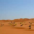 The Wahiba Sands by emmawind