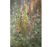 Otto Stark - Hollyhocks. Still life with flowers: still life with flowers, flowers, blossom, nature, botanical, floral flora, wonderful flower, plants, cute plant for kitchen interior, garden, vase Photographic Print