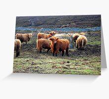 Wee Hieland Coo Beasties Greeting Card