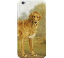 Niels Aagaard Lytzen - A Golden Retriever On A Path. Dog painting: Retriever, dogs, doggy, lucky, pets, wild life, animal, smile,  Golden, kids, nature iPhone Case/Skin