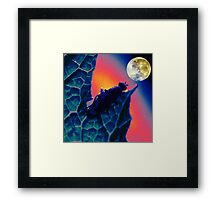 Bug Moon (I.3) Framed Print