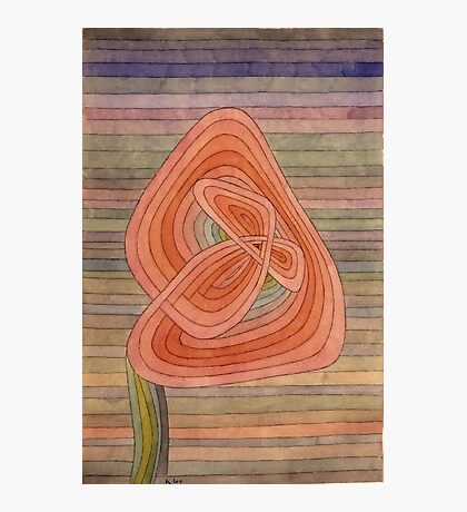 Paul Klee - Lonely Flower. Abstract painting: abstract art, geometric, Lonely ,  Flower, lines, forms, creative fusion, spot, shape, illusion, fantasy future Photographic Print