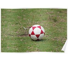 Soccer Ball on a Field Poster