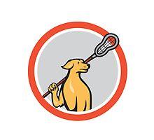 Dog Lacrosse Player Crosse Stick Cartoon Circle by patrimonio