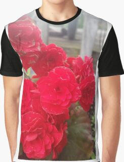Begonia Flower Graphic T-Shirt