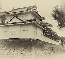 Nijo Castle - circa 2013 by Colin  Ewington