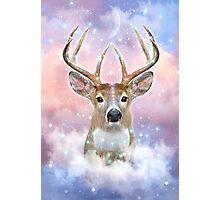 Dream By Day (Rain-deer Dreams) Photographic Print