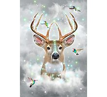 Dream By Day (Rain-deer Dreams) v.2 stormy Photographic Print