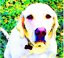 You Are My World - Yellow Lab Art Photographic Print