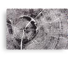 Rock Canyon Pine Cropped Canvas Print