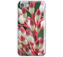 Floral Candy Corn iPhone Case/Skin
