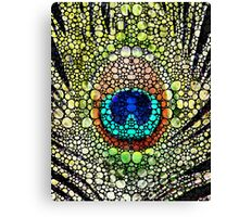 Peacock Feather - Stone Rock'd Art by Sharon Cummings Canvas Print