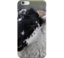 Laughing black faced lamb iPhone Case/Skin