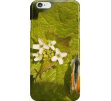 Orange Tip With Flowers iPhone Case/Skin