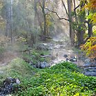 Buchan Creek East Gippsland Vic. by helmutk